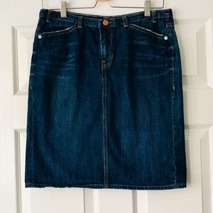 Gap Limited Edition Jean Skirt